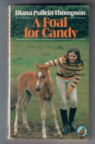 A foal for Candy