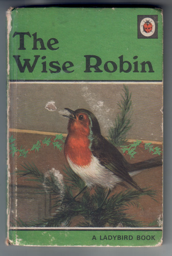 The Wise Robin