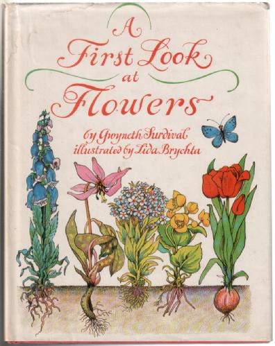 A First look at Flowers and Flowering Plants by Gwyneth Surdival