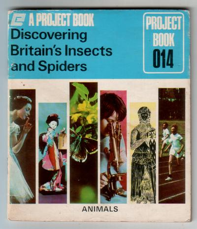 Discovering Britain's Insects and Spiders by George Ashby