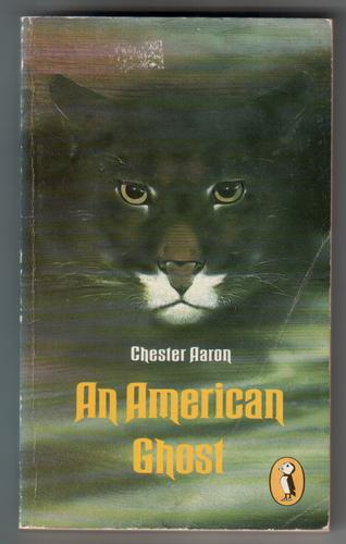 An American Ghost by Chester Aaron