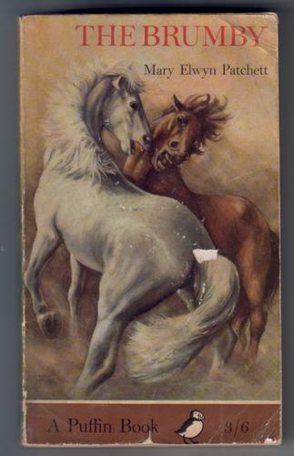 The Brumby by Mary Elwyn Patchett