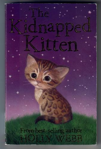 The Kidnapped Kitten