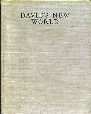 David's New World by Vernon Stokes