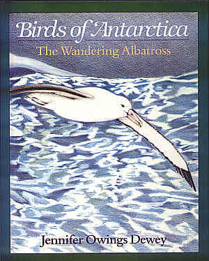 The Wandering Albatross by Jennifer Owings Dewey
