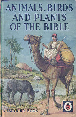 Animals, Birds and Plants of the Bible by Hilda Rostron