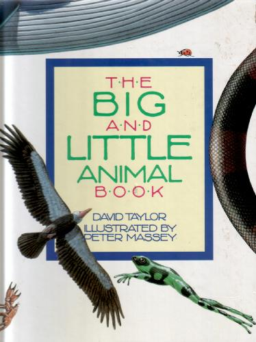 The Big and Little Animal Book by David Taylor