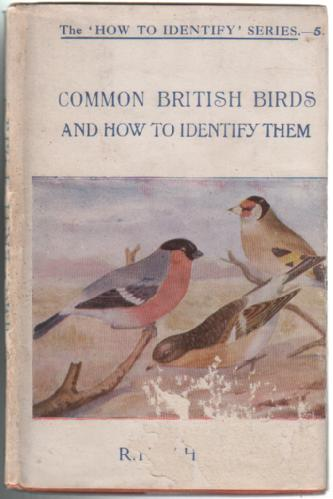Common British Birds and how to identify them