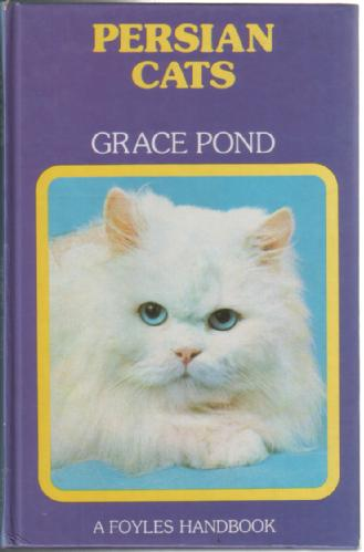 Persian Cats by Grace Pond