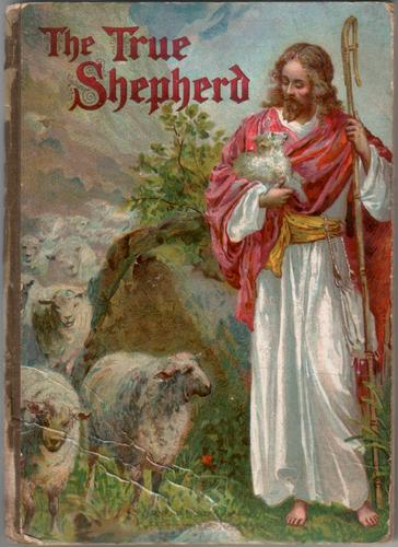 The True Shepherd