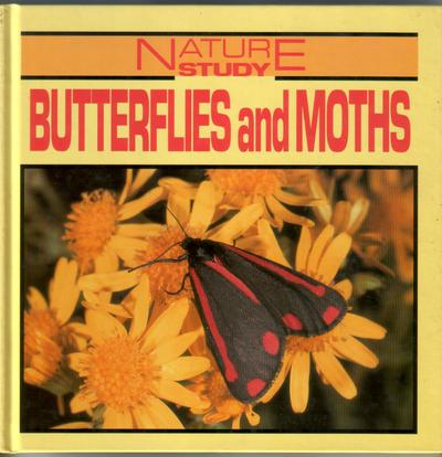 Butterfiles and Moths by Anne Smith