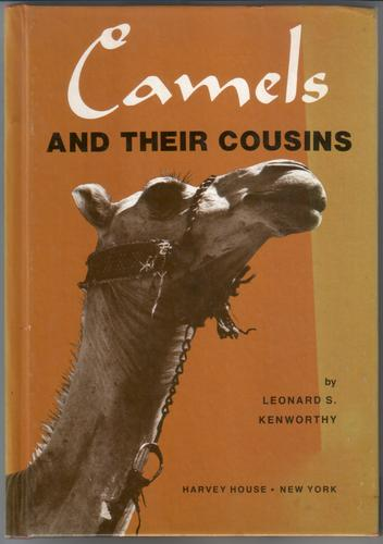 Camels and their Cousins