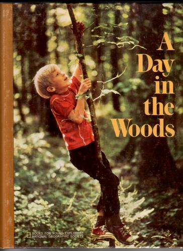 A Day in the Woods by Ronald M. Fisher