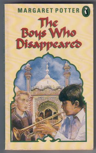 The Boys Who Disappeared