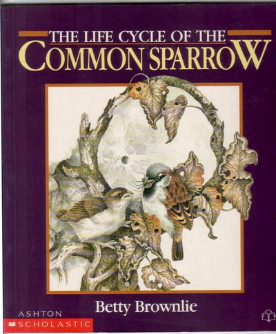 The Life Cycle of the Common Sparrow by Betty Brownlie