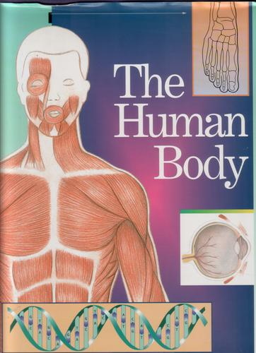 The Human Body by William Clevenger