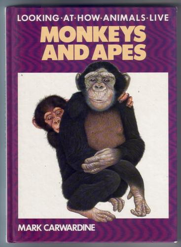 Looking at how animals live: Monkey and Apes