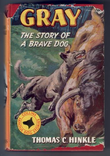 Gray, the story of a brave dog