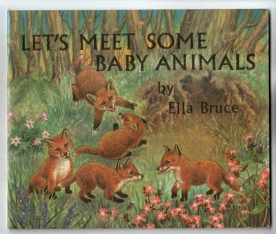Let's Meet Some Baby Animals